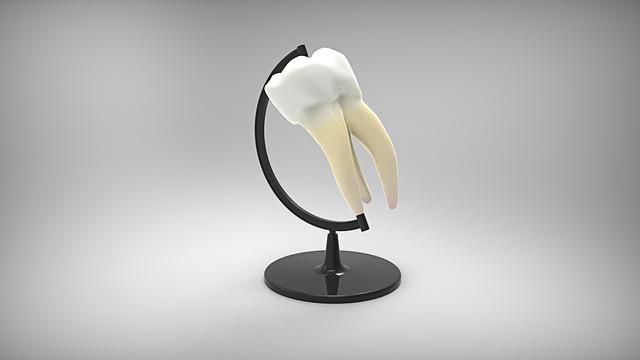 おしりに尻尾のあるコーギーブログの写真。歯が痛くて我慢できない