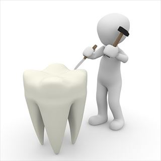 おしりに尻尾のあるコーギーブログの写真。歯医者に予約をする