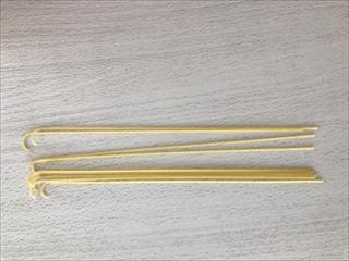 コーギーブログ スパゲティ